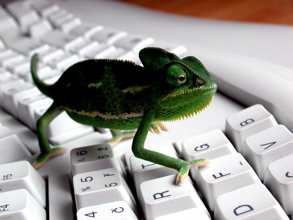 De ce este tastatura QWERTY standard ?
